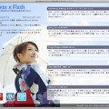 WordPress & Flash